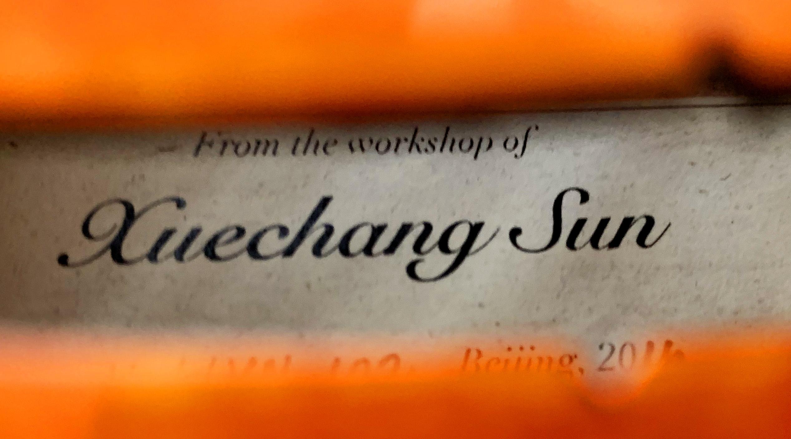 Xuechang Sun - Fiddleheads Series