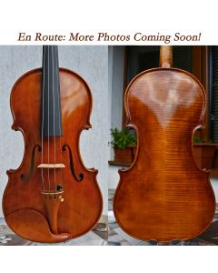 Stankov Rose Valley violin front and back