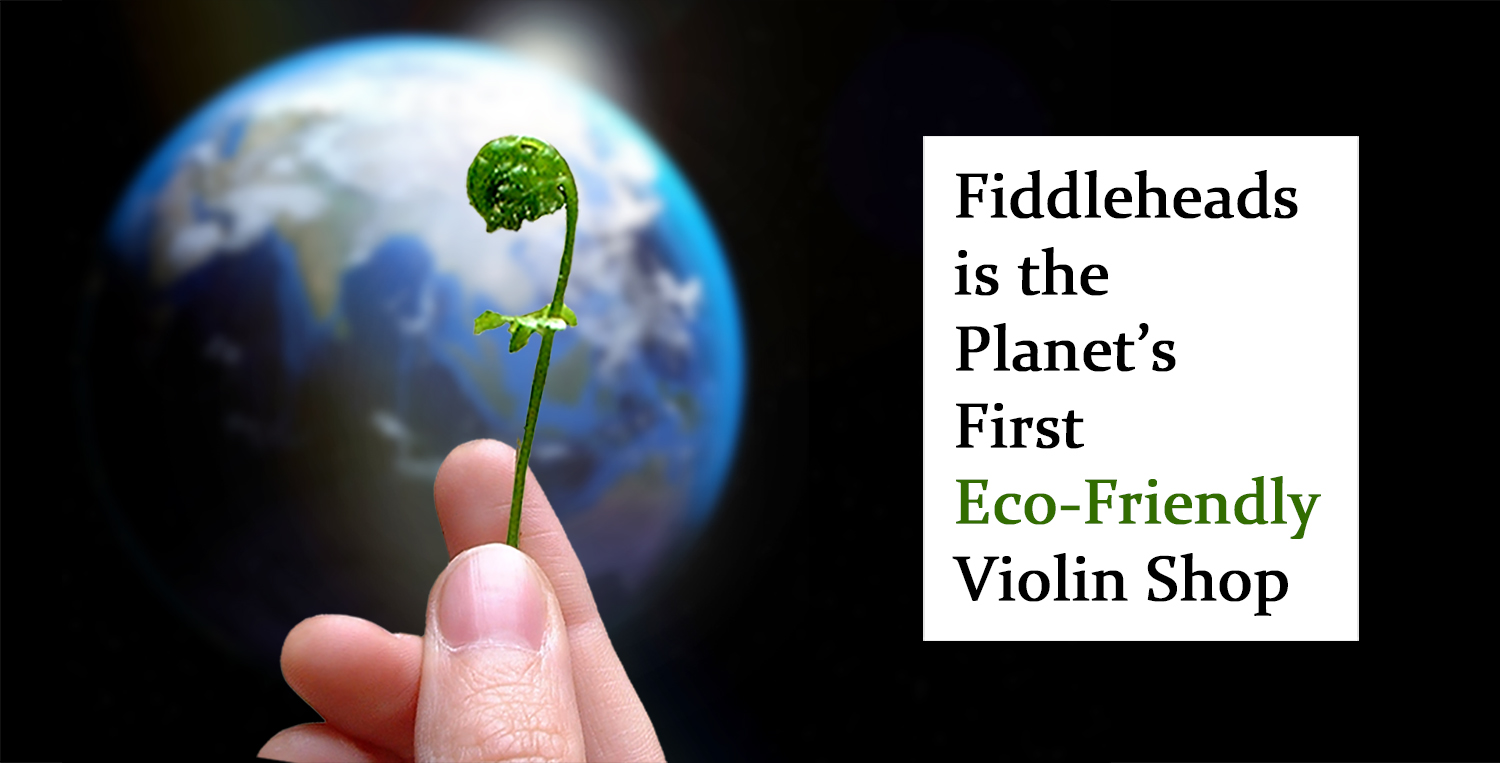 hand holding fiddlehead fern branch with the earth in the background, text says