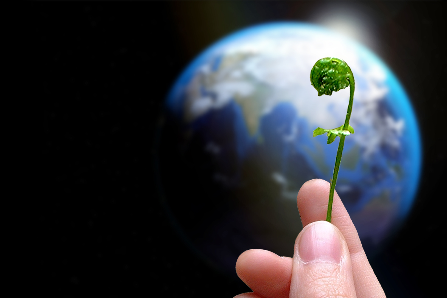 Rhiannon's hand holding a fiddlehead fern with a photo of planet Earth in the background